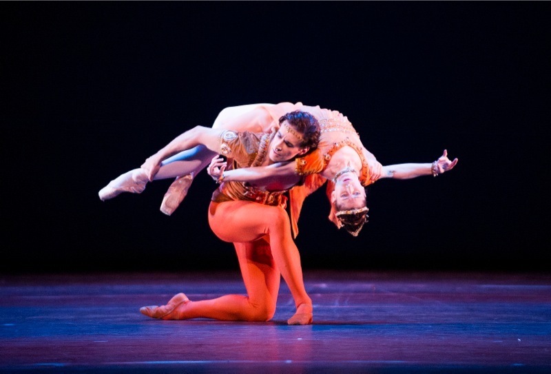 Benjamin and Hristov in 'Meditations'