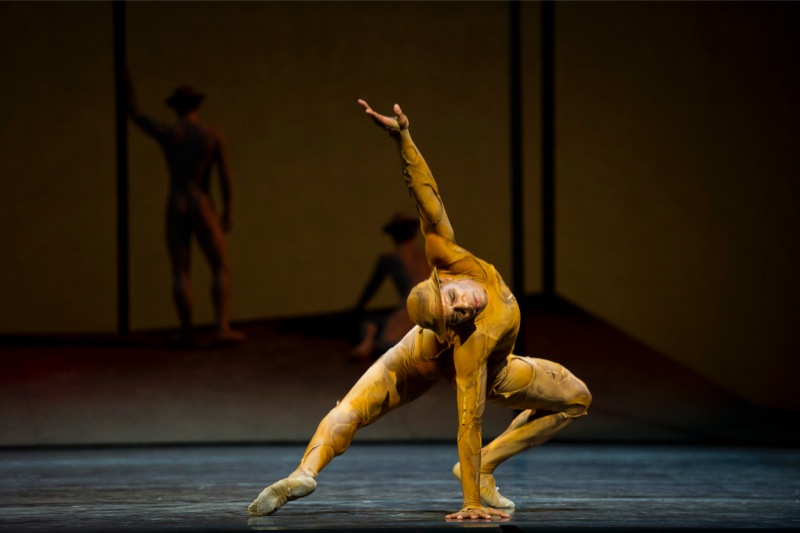 Acosta in Gloria/ ©ROH/ Bill Cooper