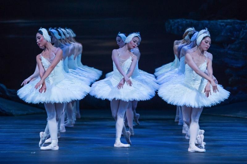 Act II swans